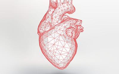 Heart Screening Package